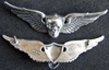 Vietnam SF SOG RT Florida wing badge sterling