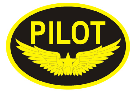 PILOT Goldwings Patch (Iron On), ACI Aviation Jewelry and Bagtem Number