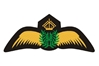 Civil Pilot Gold Wings Patch (Iron On)
