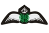 Civil Pilot Silver Wings Patch (Iron On Applique), ACI Aviation Jewelry and Bag Tags Item Number APP014