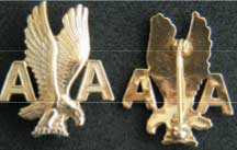 American Airlines Stewardess Collar Service Pin More than five years, Weingarten Gallery Item Number P-1778G