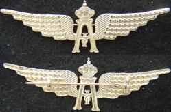 1918 Belgium Pilot Wing w Collars Sterling w Gold Plate., Weingarten Gallery Item Number P-2133S