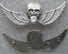 Vietnam Special Forces Skull Paratrooper badge unofficial sterling silver, Weingarten Gallery Item Number P-2281