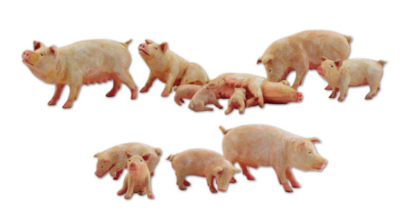 Yorkshire Pigs - 12-Piece Set (N)