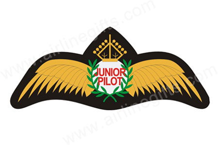 Junior Pilot Wings Patch (Iron On) by Airline Gifts by Aviation Collectables Intl Item Number: APP401